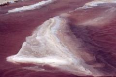 34-Pink Water II