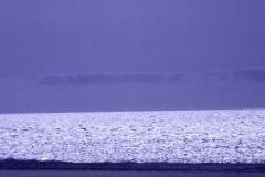 58-Silver Sea I